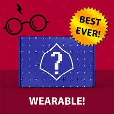Best Ever Mystery WEARABLE Past Box!