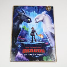How to Train Your Dragon Print