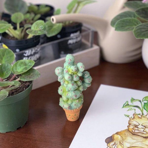Mimbulus Mimbletonia Plant