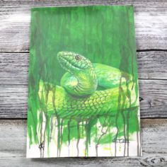 Kevin Cantwell Limited Edition House Pride Print – Snake
