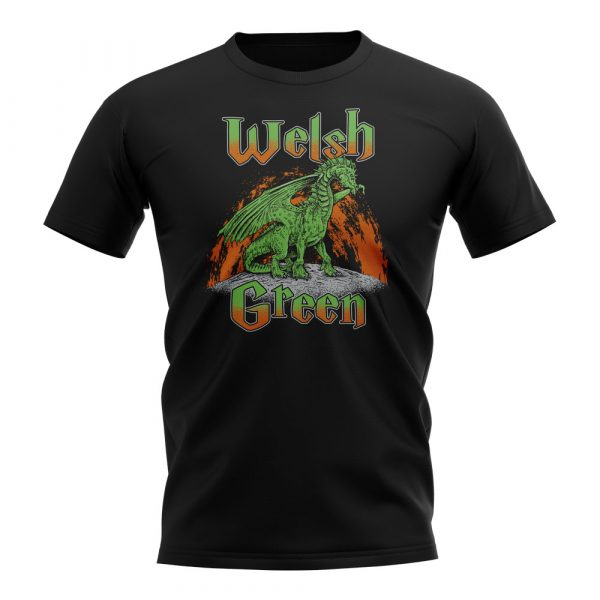 Short Sleeved Black T-Shirt of the Welsh Green Dragon from Harry Potter and the Goblet of Fire.