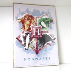 Licensed and Exclusive Hogwarts Print