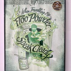 Licensed & Exclusive Floo Powder Print in Glass and Metal Display Frame