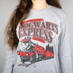 Express Long Sleeved T-Shirt (Grey)