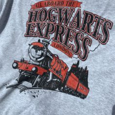 Hogwarts Express Short Sleeved T-Shirt (Grey)