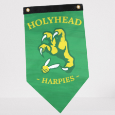 Exclusive Holyhead Harpies Quidditch Team Pennant