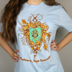 Exclusive French Wizardry School T-Shirt (Blue)