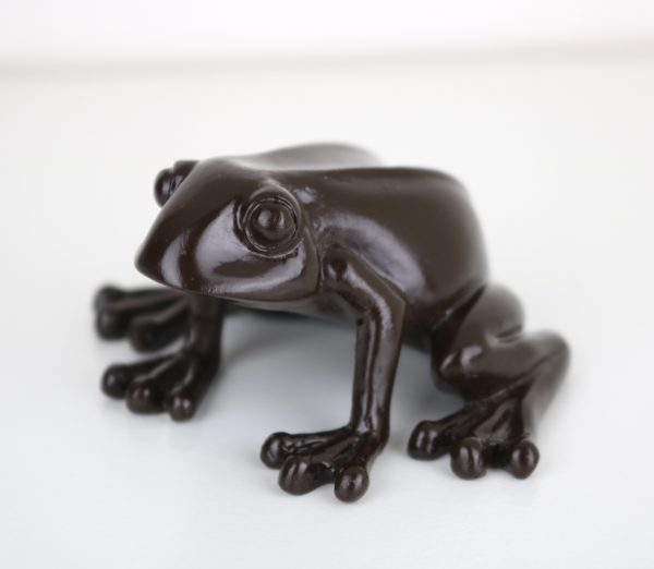 Exclusive Magical Living Chocolate Frog