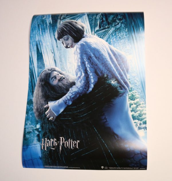 Licensed and Exclusive Hagrid and Madame Maxime A3 Print