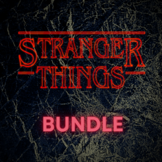 Stranger Things Standard Bundle