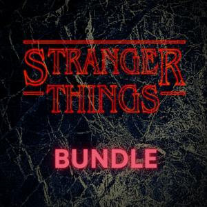 Stranger Things Standard Bundle